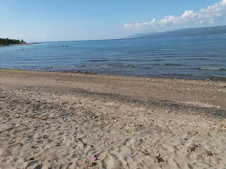 detailed description of a beach